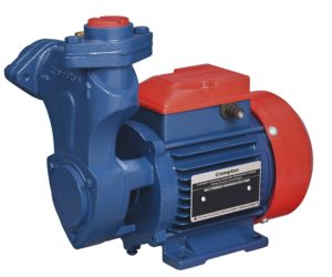 Crompton Mini Masterplus l - 1HP Self Priming Regenerative Pump